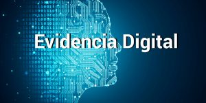 Software de Evidencias Digitales para Despachos Profesionales